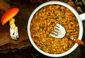 Amanita basii and skillet of that species, boletes, and native herbs - photo by Ricardo García Sandoval